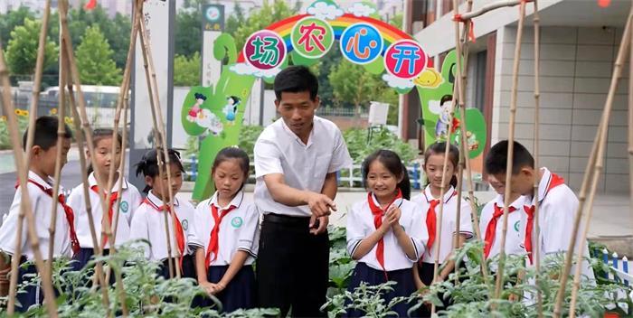 西安市鄠邑区新区小学开展蔬菜采摘义卖活动